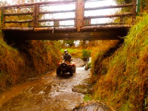 carrick quads biking ireland