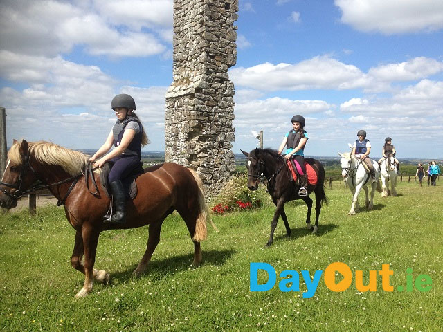 Coolmine Equestrian Centre - Horse Riding in Dublin