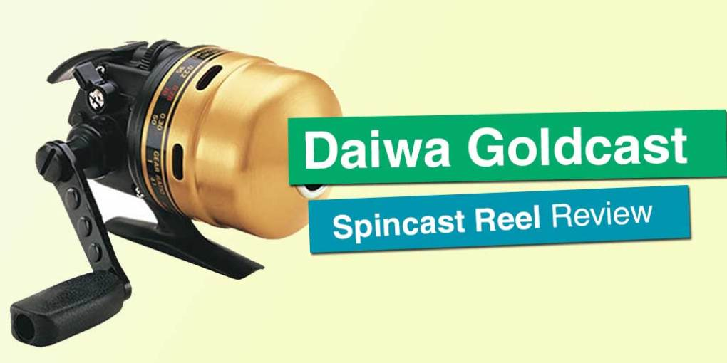 Daiwa Goldcast Spincast Reel In Depth Review