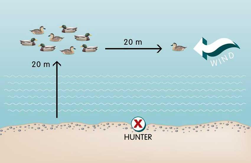 hunting duck decoy tips