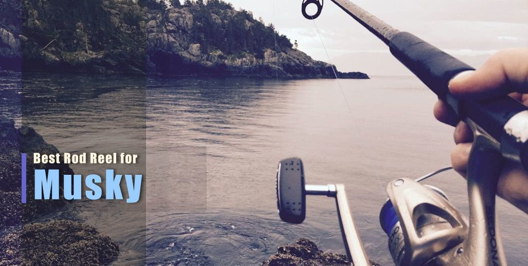 Best Musky Rod and Reel Combo