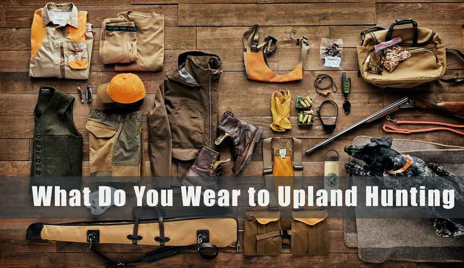 What Do You Wear to Upland Hunting