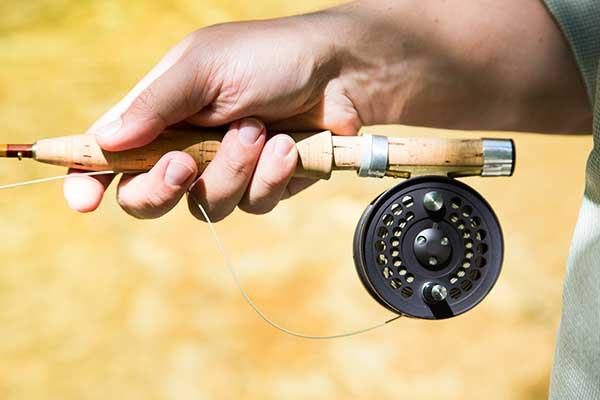 Best Small Stream Fly Rod Guides