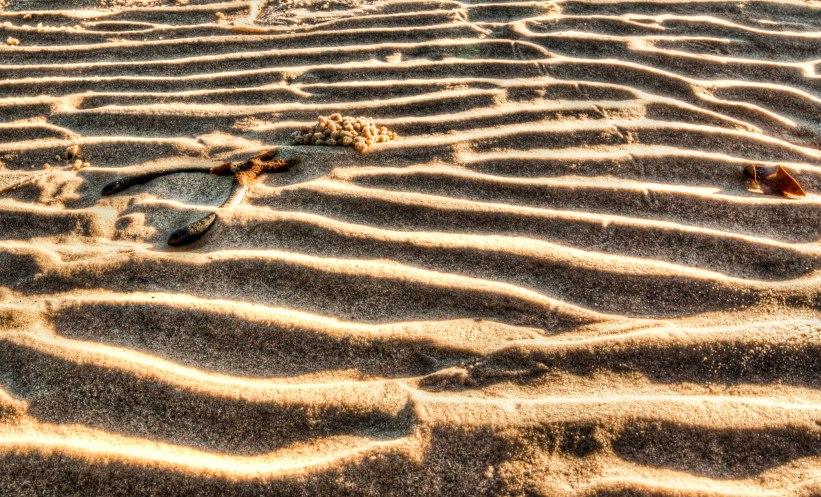 rusty pliers on sand