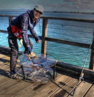 crab-fishing-redcliffe-pier