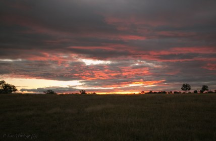 another-sunset-the-farm