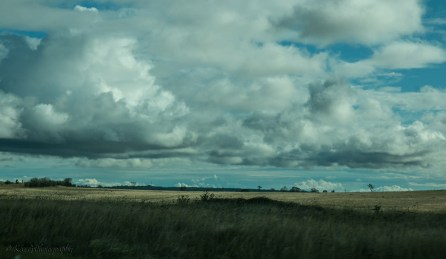 australian-bush-clouds-2