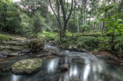 repentence creek2