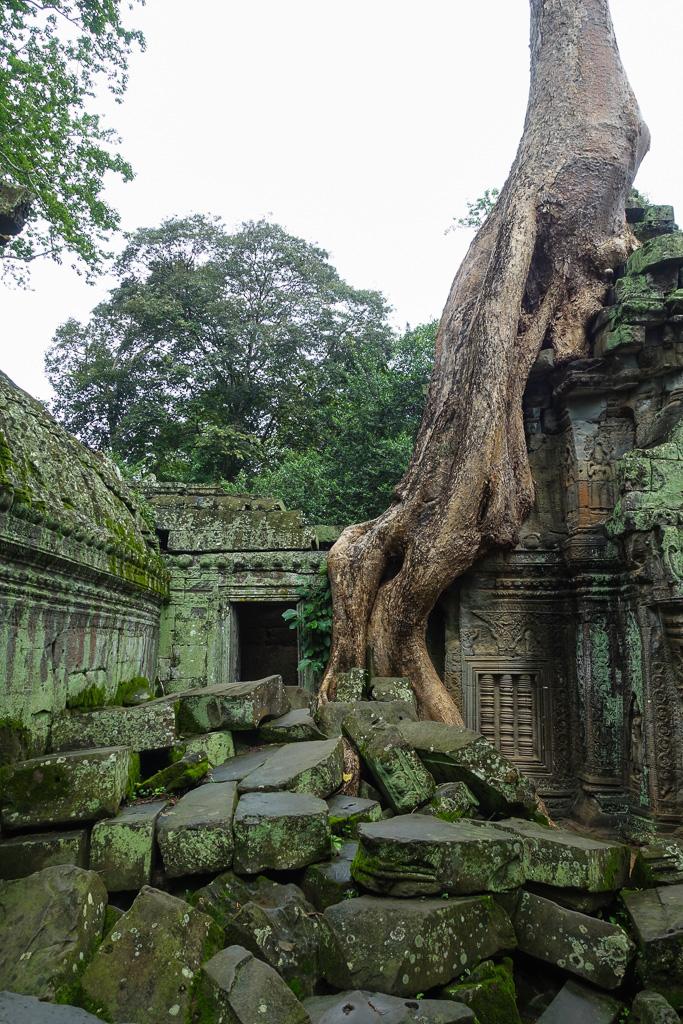 Kambodscha-98