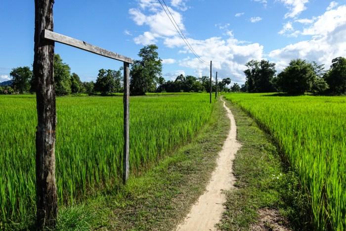 laos-07152
