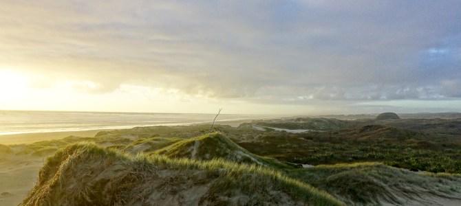 90 Mile Beach & Auckland & bis zum Abflug