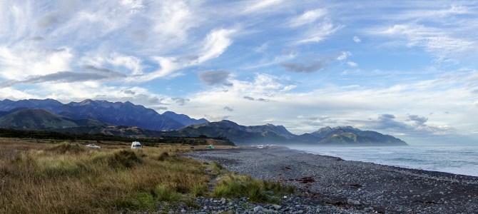 Dolphins & und der Rest der Südinsel