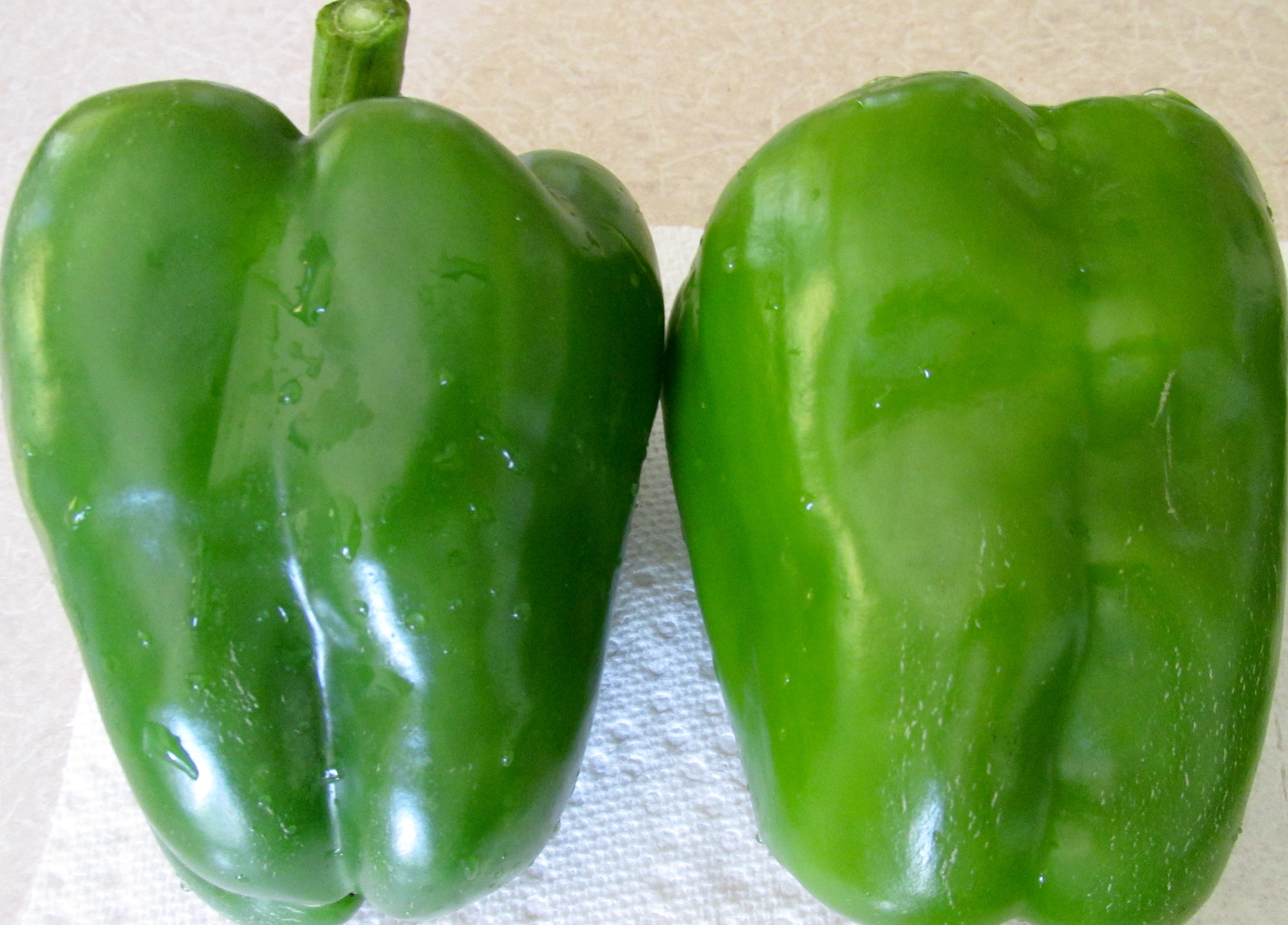 Scheepers Kitchen Garden Seeds