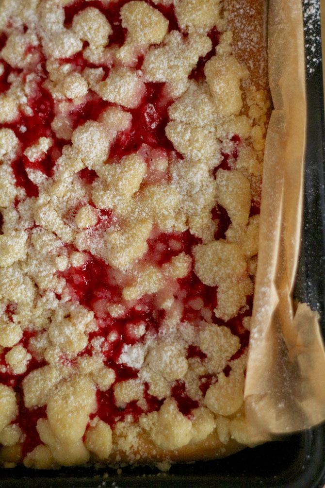 Red Currant Crumble Cake with Streusel