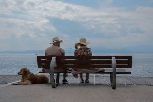 two elderly persons sitting on a bench