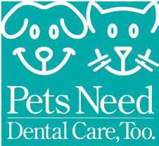 National Pet Dental Health Month - Just wanted to share with you all?