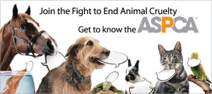 ASPCA Month - are there any ASPCAs in nyc?