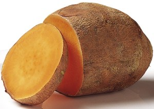 Sweet Potato Month - How do I plant a sweet potato?