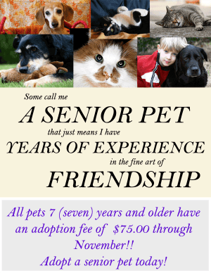 Adopt A Senior Pet Month - how much does it cost to adopt a cat from AWL (Australia)?