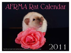 AFRMA Fancy Rat & Mouse Week - American Fancy Rat And Mouse