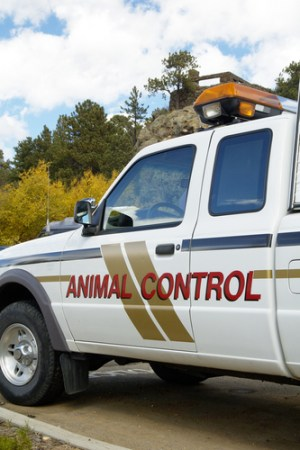 Animal Control Officer Appreciation Week - BBS Recognizes Animal Control