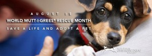 World Mutt-i-grees Rescue Month - World Mutt-i-grees Rescue