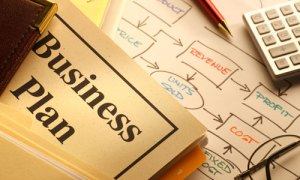 National Write A Business Plan Month - what is write in project of business studies?