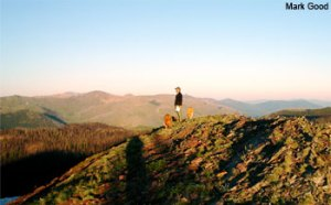 National Wilderness Month - how do i get a wilderness camping permit?