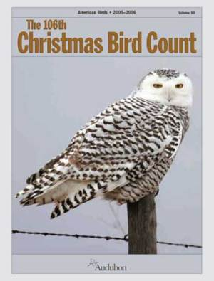 Christmas Bird Count Week - Olympics: Is it just me or is the Olympics getting monotonous now like Christmas?
