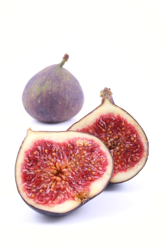 How many Brits care a fig @ UK Party Conference season? How many questions about it here in the