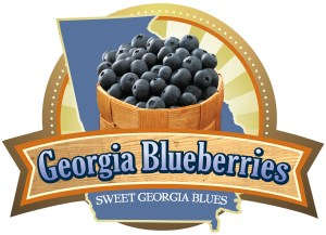 Georgia Blueberry Month - americana themed bbq ideas?