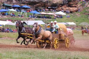 National Chuck Wagon Races