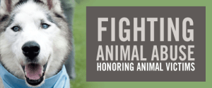 National Justice for Animals Week - In lieu of recent headlines, should there be an animal Bill of Rights?