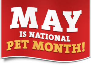 National Pet Month - Is 1 FIRST NATIONAL CARD a legit credit card co.?