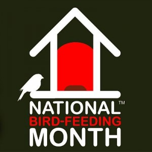 National Bird Feeding Month - Does anyone know what some.?
