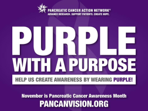 Pancreatic Cancer Awareness Month - November is the month for what cancer awareness?