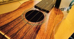 World Play Your Ukulele Day - what is the song the guys played on the bus at the end of a real world cancun episode?