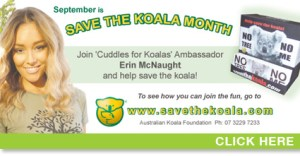 Save The Koala Month - Do Kangaroo drinks water?