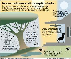 Weather: Heat goes on; weather affects mosquitoes - USATODAY.