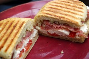 National Panini Month - Traveling around Europe for about 5 months!!!! Help me please!!!!?