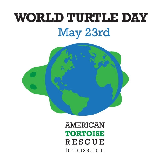 when is national turtle day?