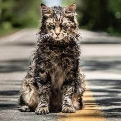 Trailer: Pet Sematary (2019)