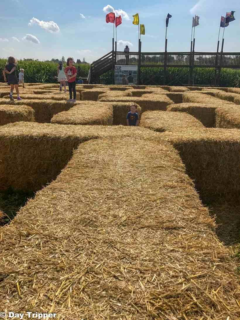 Straw Barrel Maze at Severs Corn Maze