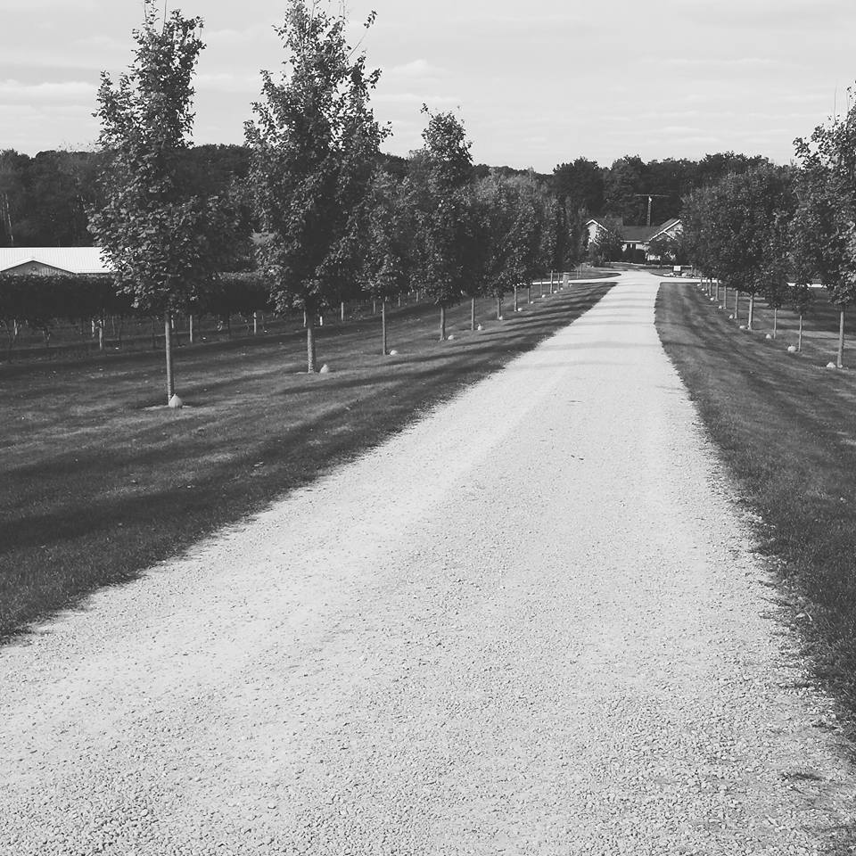 CountryRoad to Whitewater Wines