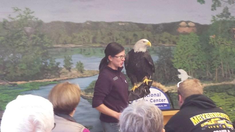 Eagle Show at the National Eagle Center in Wabasha