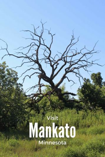 Mankato is just an hour outside of the Twin Cities and has so much to see and do. From Art on the Streets, to Bike Trails, What are you waiting for!