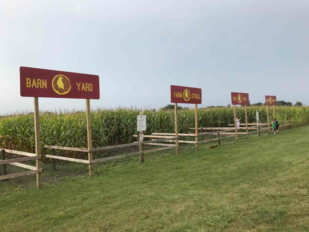 The Corn Maze at Crow River Winery