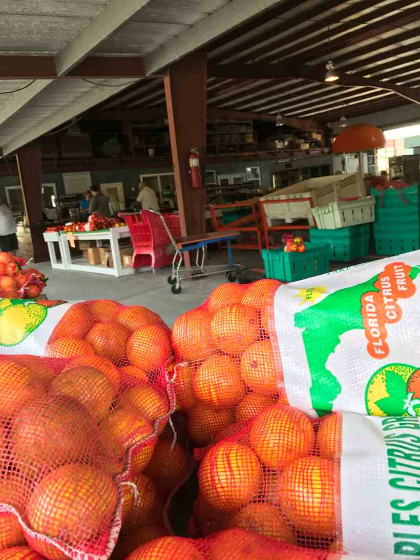South Naples Citrus Grove Market