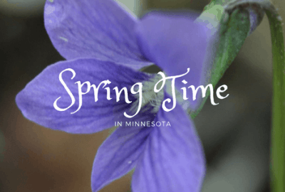 Spring Time in Minnesota
