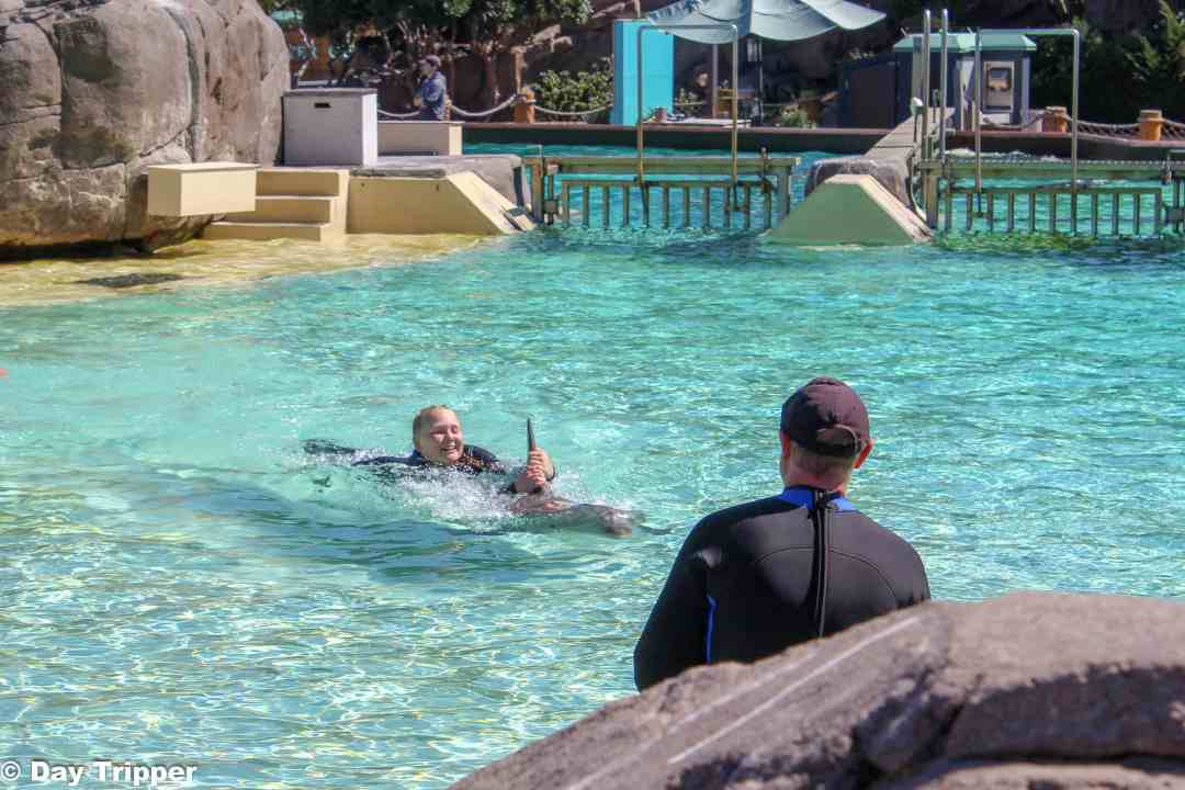 Swimming on Dolphins at SeaWorld